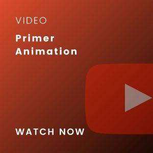primer animation video